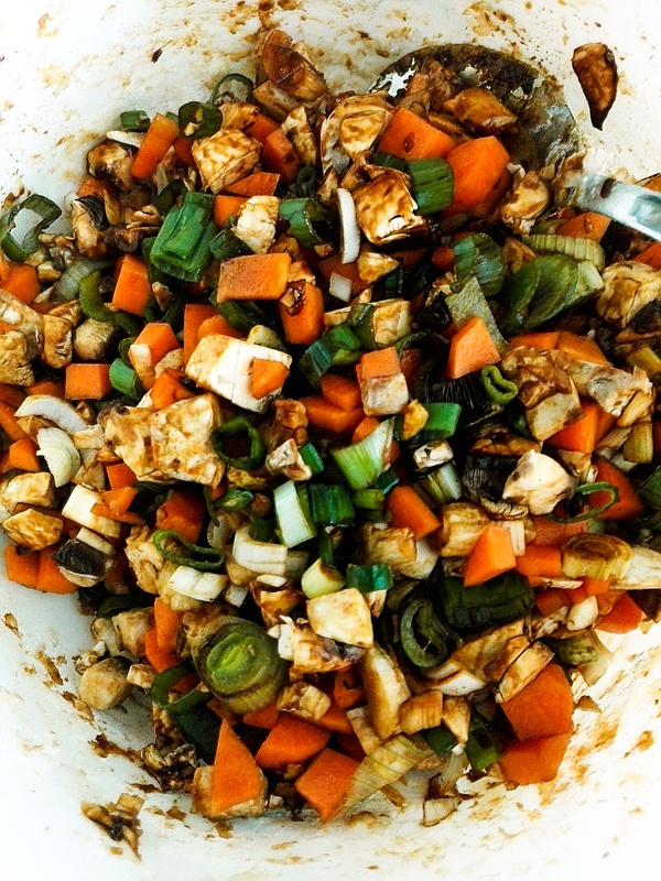 Vegetarische Gyoza Fuellung mit Pilzen, Karotten und Fruehlingszwiebeln